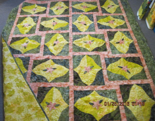 Modified Twilight Quilt